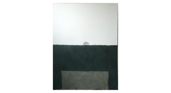 Chair and Tree. Forest behind gray-greenish wall